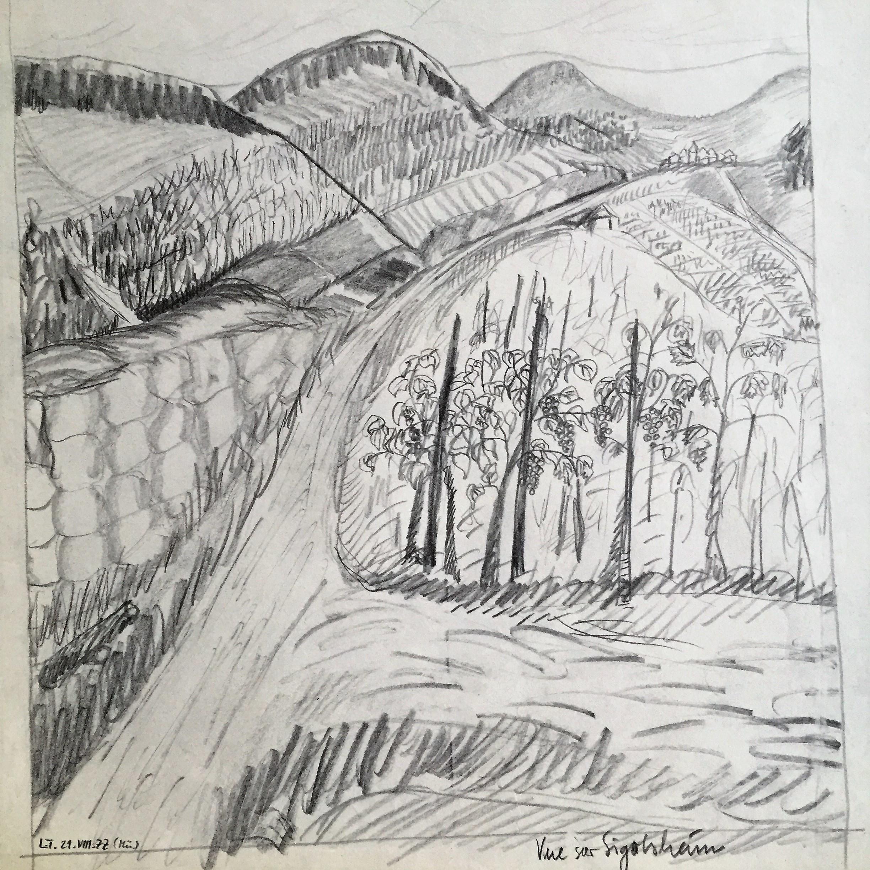 Vue sur Sigolsheim 1977